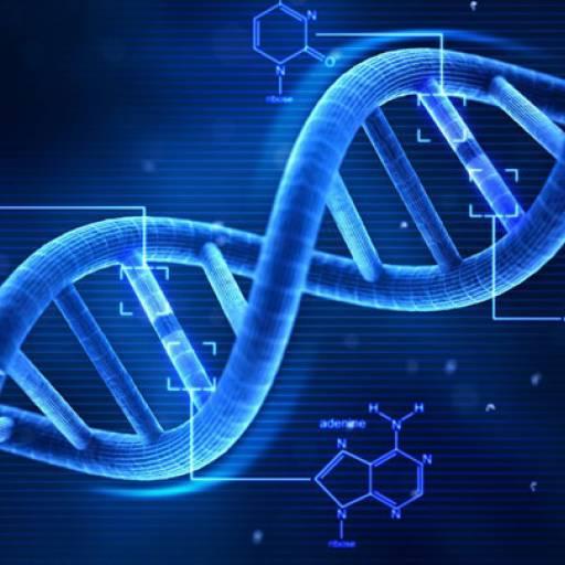 Foi descoberta a estrutura da molécula de ADN