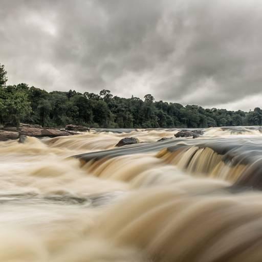 Foi criado o Parque Nacional da Amazónia