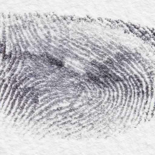 Foi utilizado pela primeira vez as impressões digitais como meio de identificação
