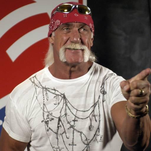 Nasceu o lutador de luta-livre Hulk Hogan