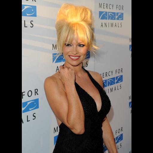 Nasceu a actriz e modelo Pamela Anderson